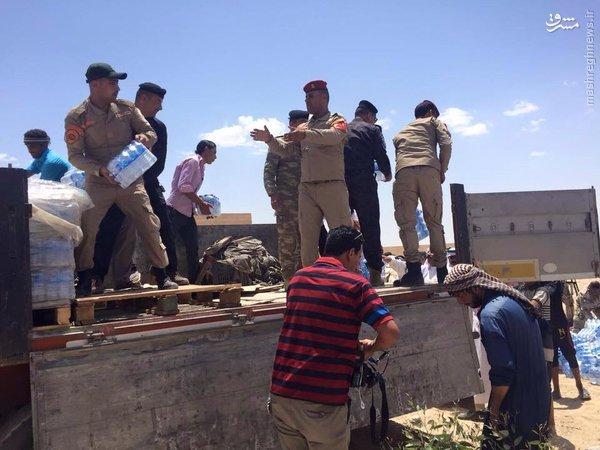 تدارکات شیعیان عراق برای آوارگان فلوجه+عکس