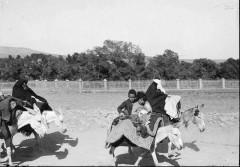 عکس/ وسایل نقلیه در زمان قاجار