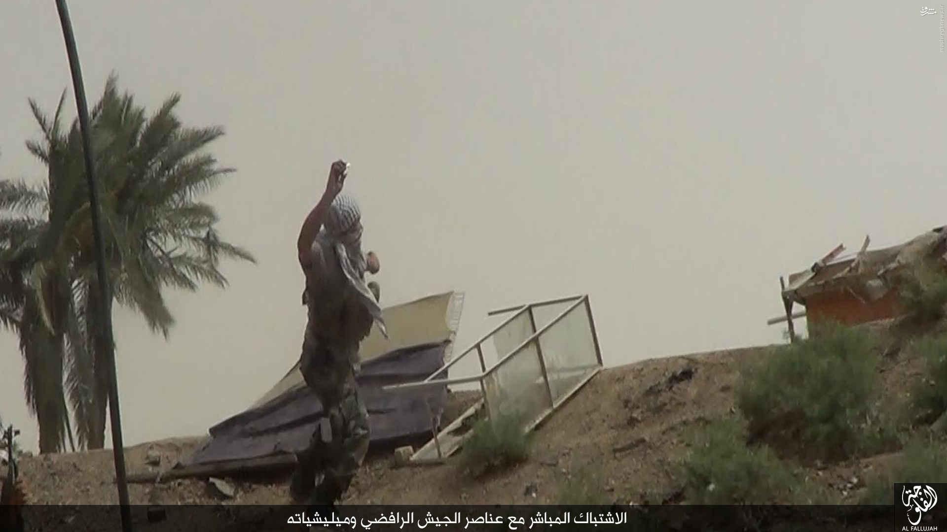 روایت داعش از نبردهای جنوب فلوجه+عکس