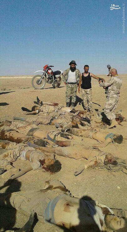 عملیات ارتش در شمال لاذقیه/پیشروی نظامیان سوری به سمت طبقه/داعش محاصره منبج را شکست/