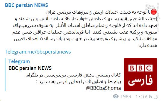دلسوزی بی بی سی برای داعش در فلوجه+عکس