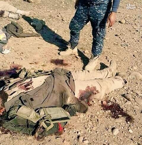 تلفات سنگین داعش در فلوجه+عکس