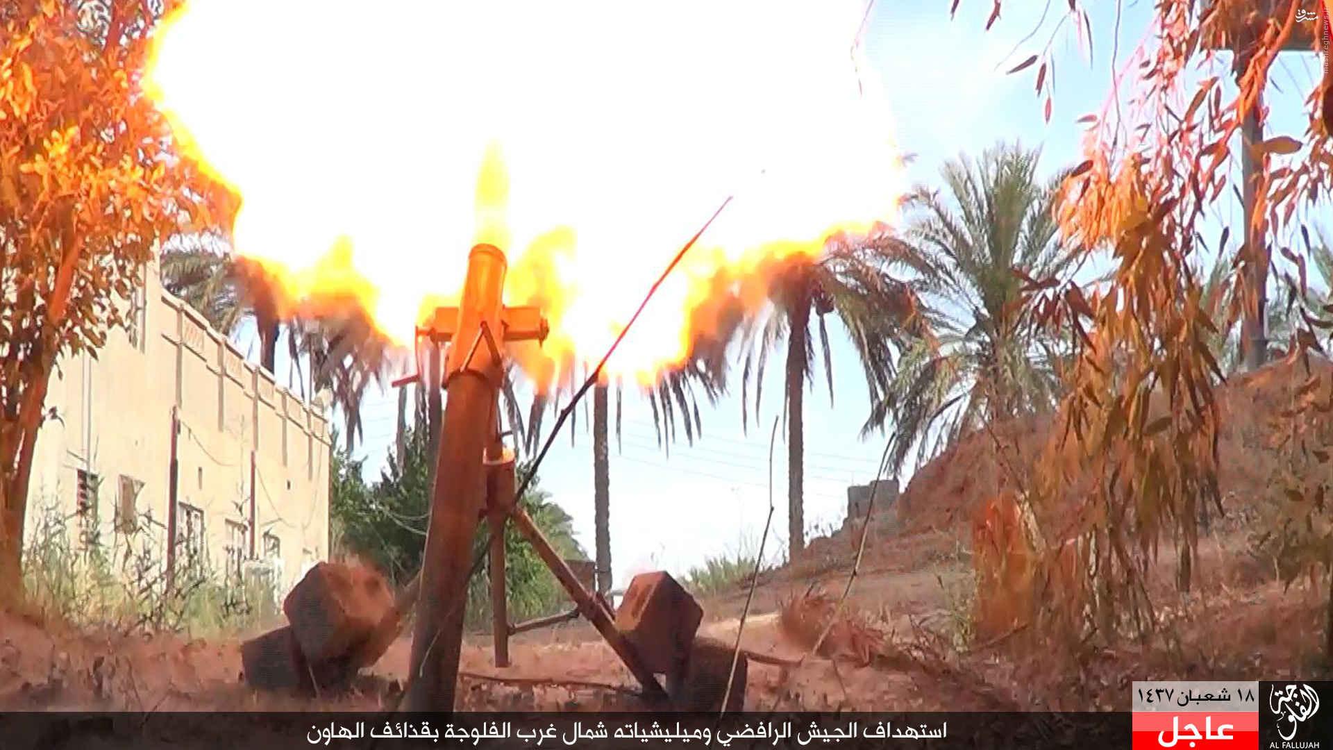 درگیری های شمال فلوجه به روایت داعش+عکس