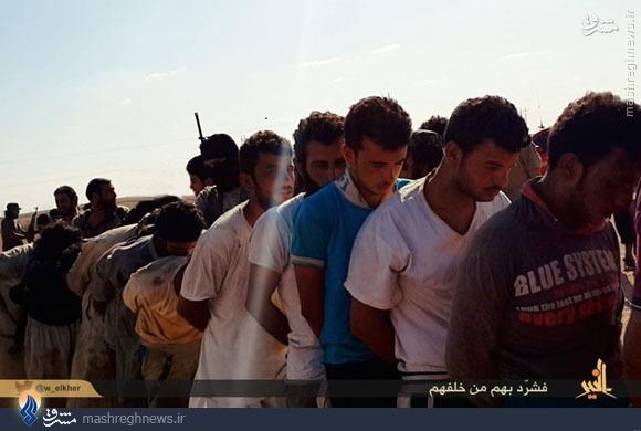 داعش با اهل سنت عراق چه کرد؟+عکس