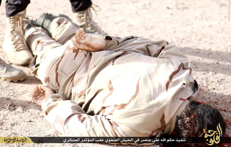 دستگیری دومین شیخ قبائل حامی داعش در فلوجه+عکس