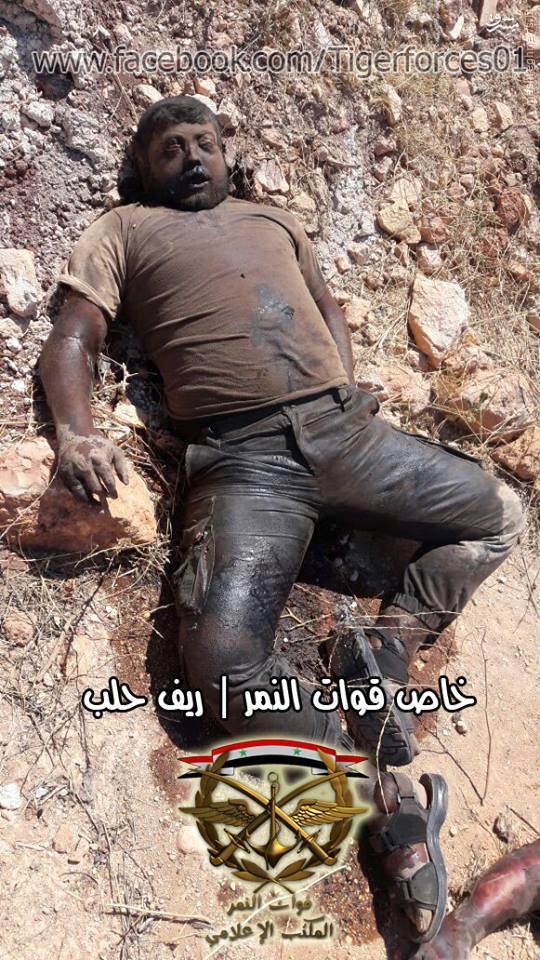 روز خونین تروریستها در مزارع ملاح حلب+عکس