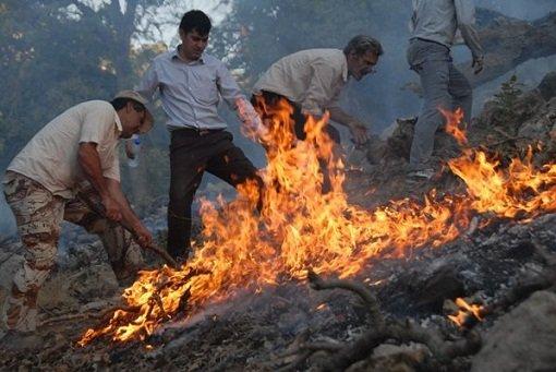 سهلانگاری گردشگران علت آتشسوزی جنگلهای «قلیونی»