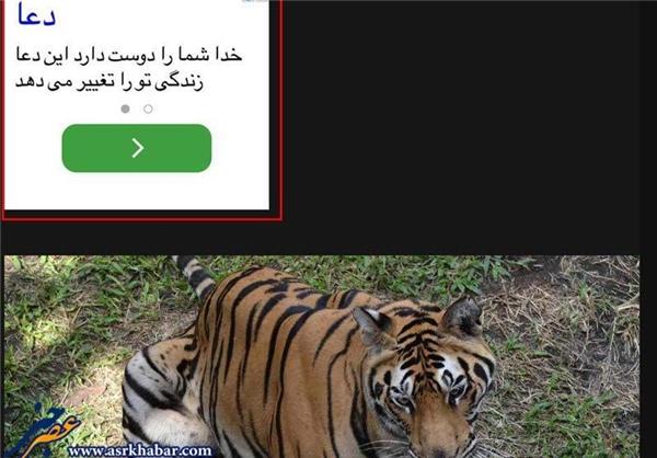 روش جدید تبلیغ مسیحیت برای ایرانیان +عکس