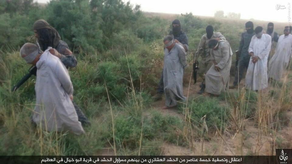 اعدام 5 شهروند سنی عراقی توسط داعش+عکس