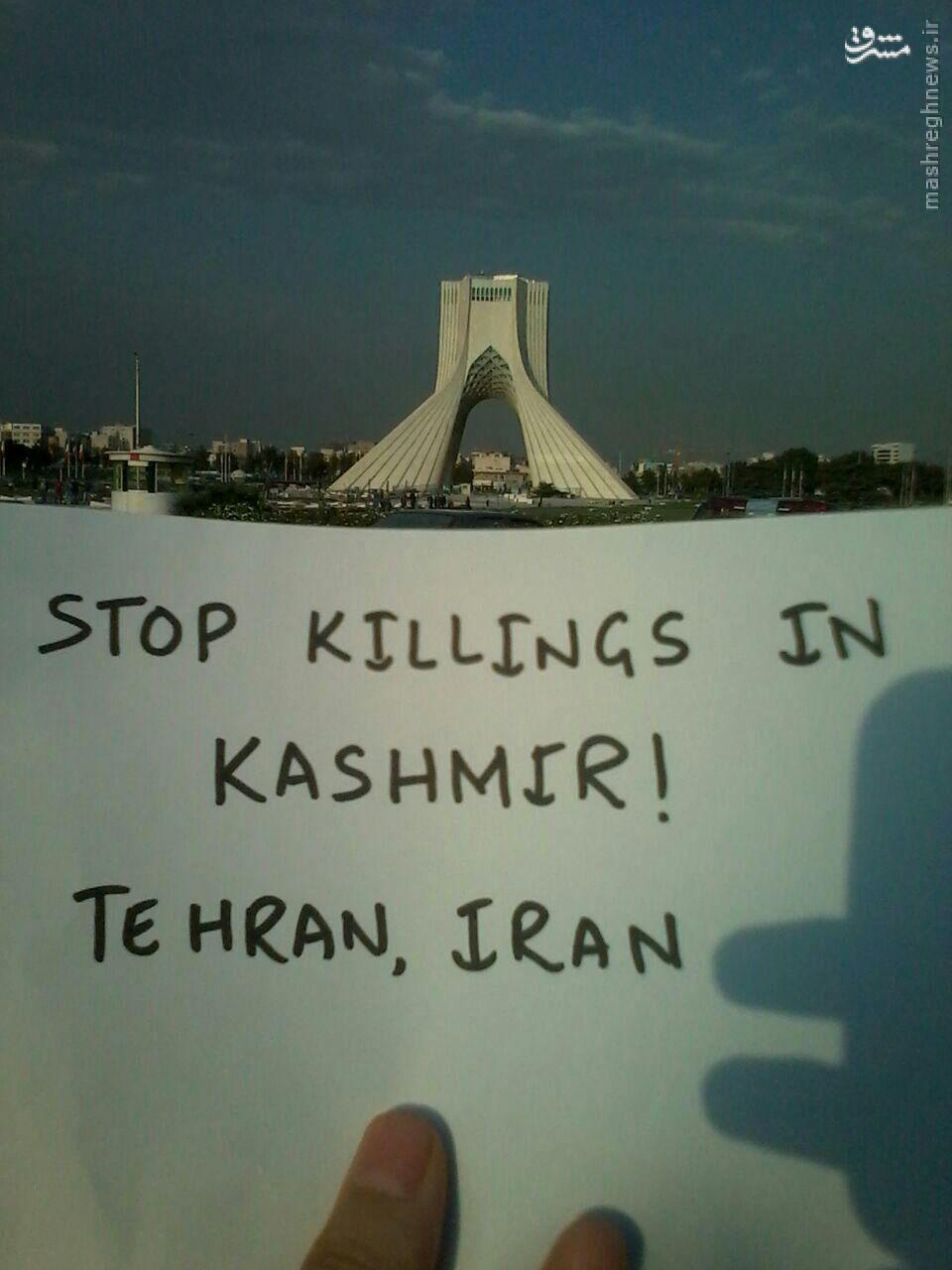 عکس/ کمپین حمایت از مسلمانان کشمیر
