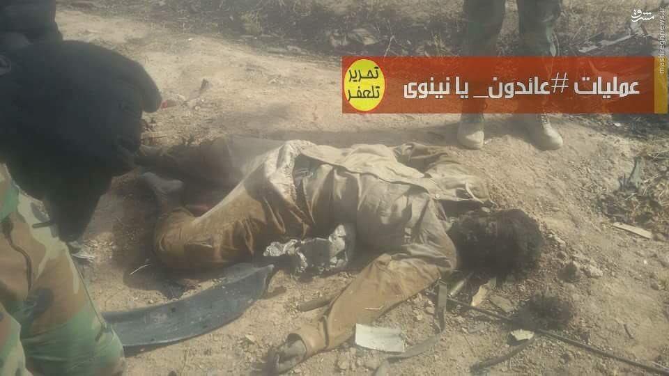تصاویر اجساد متلاششی شده داعش در موصل(+18)