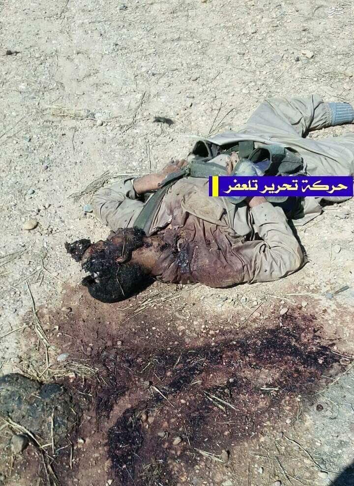 اجساد داعش
