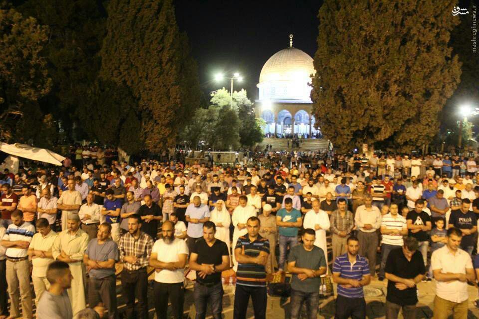 نماز جماعت در مسجد الاقصی+عکس