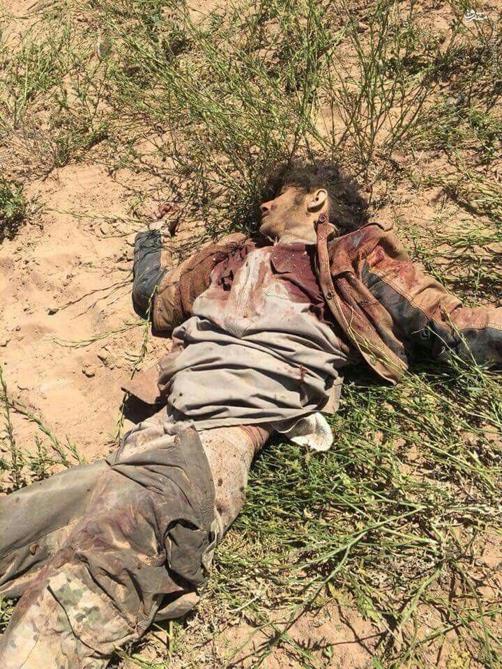 تلفات سنگین داعش در درگیری های شرقاط عراق+عکس