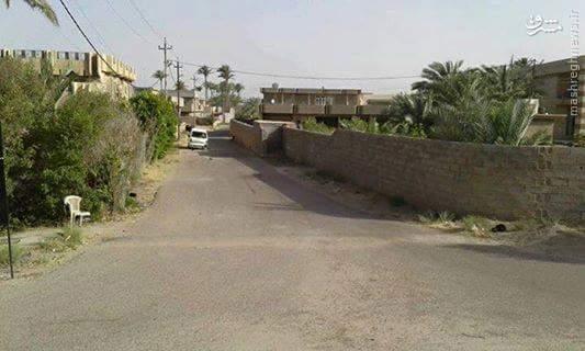 آزادسازی منطقه حلابسه فلوجه+عکس