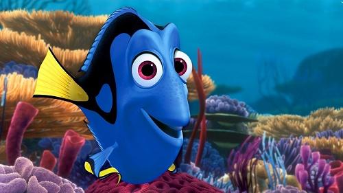 چرا ماهیها عاشق میشوند؟!