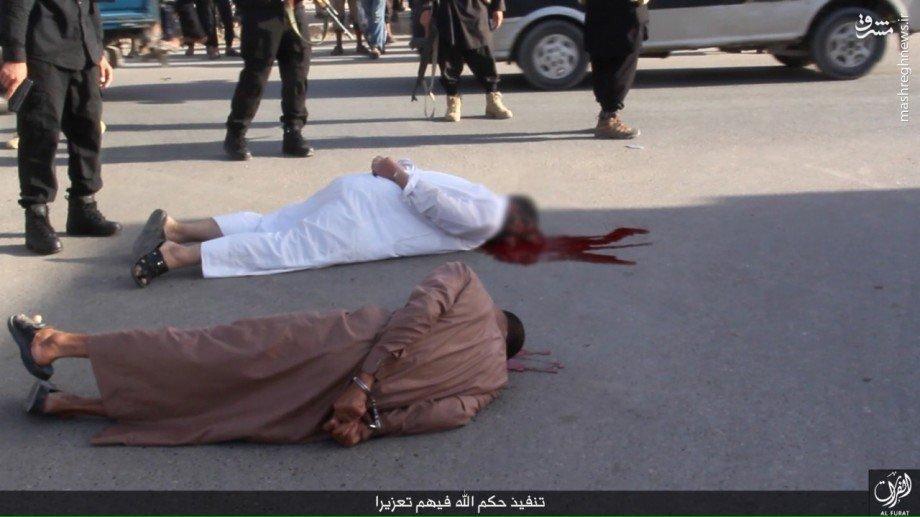 اعدام خونین 5 عراقی بدست داعش بجرم فرار