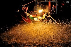 عکس/ روش عجیب ماهیگیری با آتش