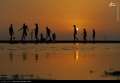 عکس/ غروب زیبای بندر بوشهر
