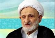انتقاد آیتالله بهجت به عملکرد شاهزادههای سعودی