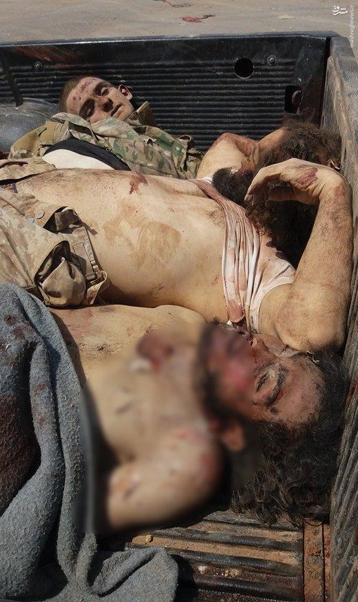 تلفات سنگین تروریستها در حلب