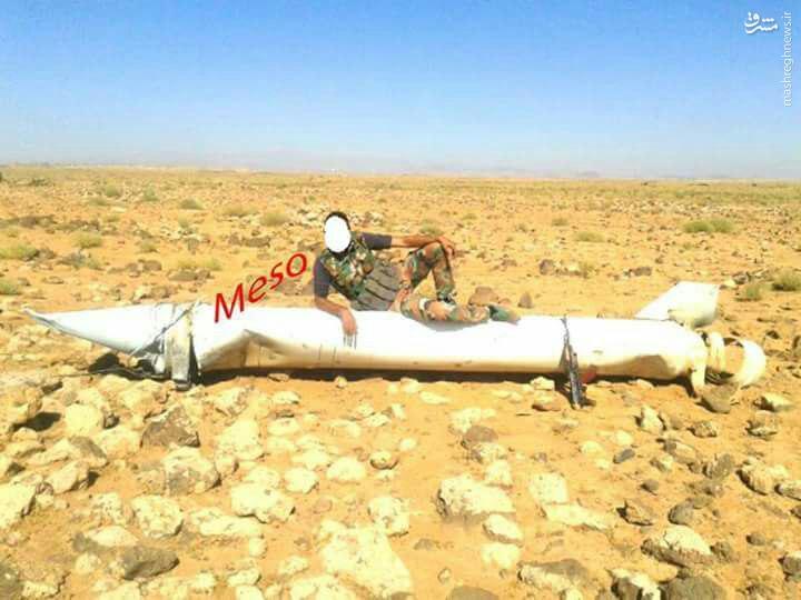 موشکی که پرنده های اسراییلی را شکار کرد+عکس