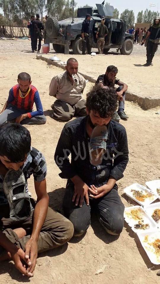 اسارت 10 داعشی در قیاره عراق+عکس