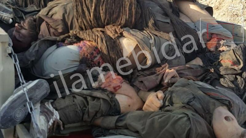 تصاویر جدید اجساد تروریست های کشته شده در کرمانشاه(+18)
