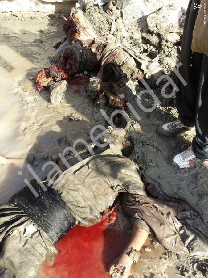 تصاویر جدید اجساد تروریست های کشته شده در کرمانشاه