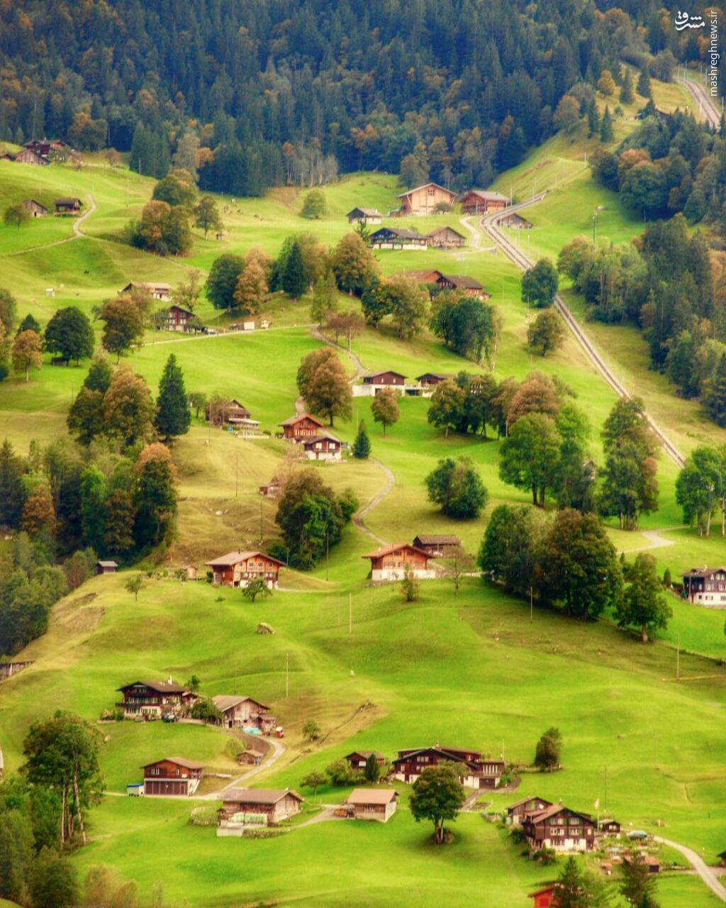 روستایی در دامنه آلپ، Grindelwald، سوییس عکس از Aneta (Aneta1404)