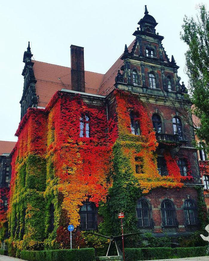 عکس شگفت انگیز پاییزی موزه ملی لهستان
