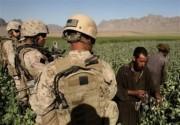 آیا مراکز نظامی خارجی از مزارع کشت مواد مخدر در افغانستان حفاظت میکنند؟