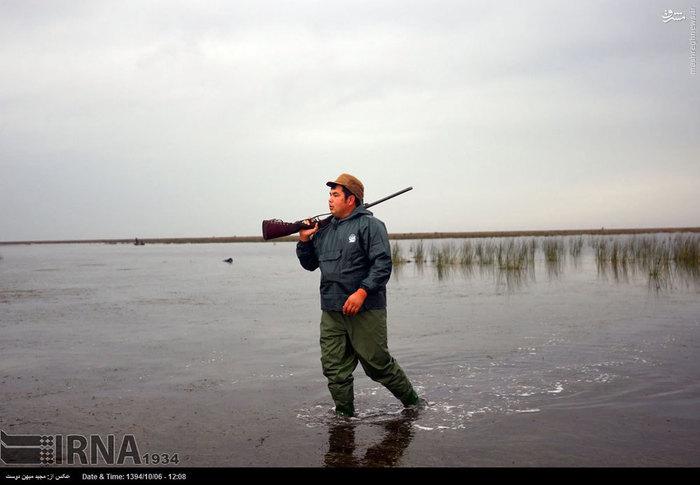 رومشگان فیلم عکس/ شکار پرندگان در بندر ترکمن