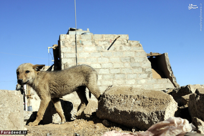 ویرانه های ناشی از حملات جنگنده های سعودی به صنعا. 29 دسامبر