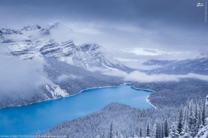 دریاچه Peyto, کانادا
