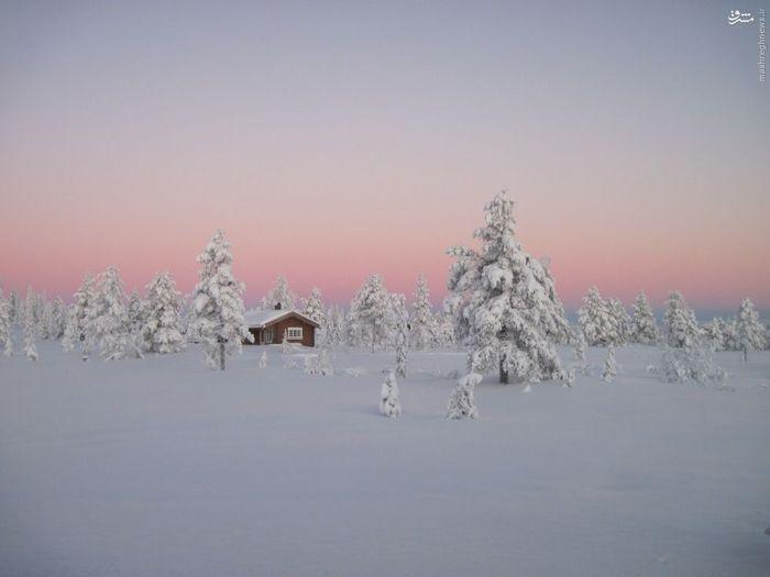 جنگل های شمالی، نروژ