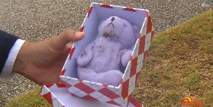 شکل و رنگ عروسک خرس قبل از بلعیده شدن توسط مار
