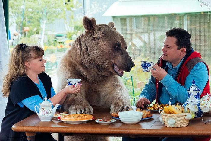 رابطه عجیب خانواده روسی با یک فروند خرس!