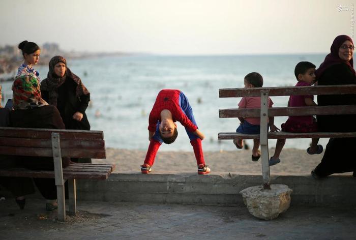 مرد عنکبوتی در فلسطین , پسر بچه عنکبوتی فلسطین, مرد عنکبوتی در فلسطین