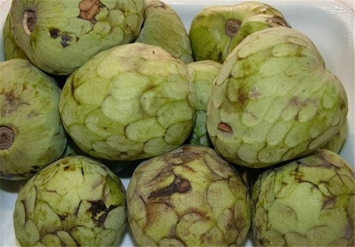 گراویولا: میوهای سبز رنگ و کمی مانند آووکادو است. مصرف این میوه به تقویت سیستم ایمنی بدن، کارکرد منظم روده، افزایش انرژی، جلوگیری از پوکی استخوان و بیماریهای قلبی کمک میکند.