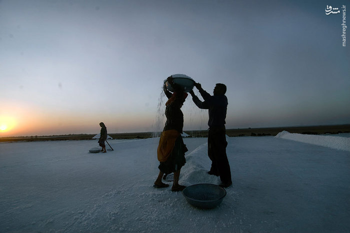معدن استخراج نمک زن هندی دختر هندی اخبار هند