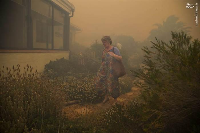 تخلیه خانهها در کیپتاون پس از سرایت آتشسوزی گسترده بر اثر وزش بادهای تند