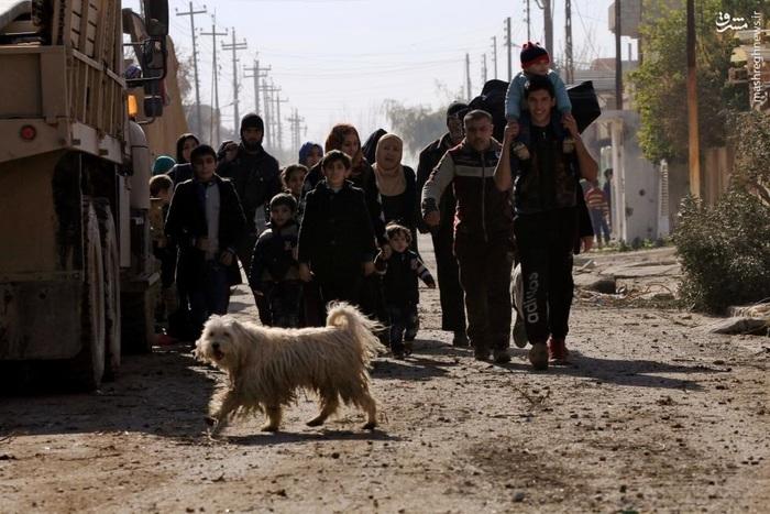 خروج یک خانواده عراقی از شرق موصل