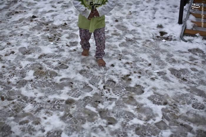 شرایط «غیرقابل توجیه» اردوگاه پناهجویان در شمال آتن به روایت کمیسیون اروپا