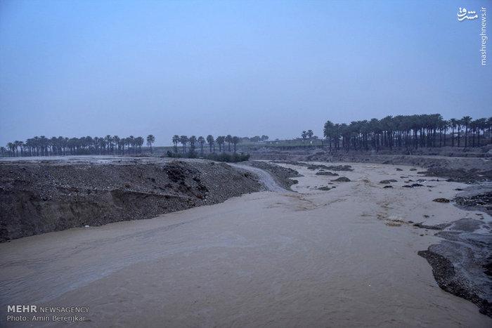بارش شدید باران و آب گرفتگی در فسا