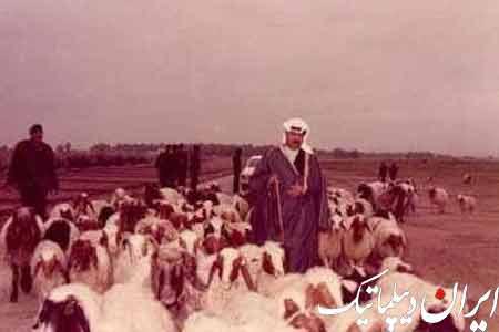 عکس های منتشر نشده ی صدام حسین! 99508_842