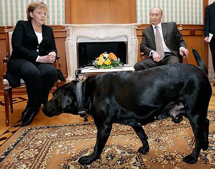 """علیرضااحسانی نیا:پرستوی """"کا. گ. ب"""" چگونه صدر اعظم آلمان شد؟ + تصاویر 10"""