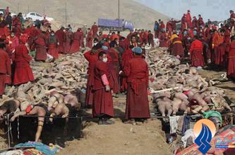 *** آزادي يا سركوب اقليت هاي كشور ميانمار ***