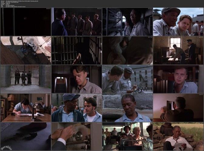 The Shawshank Redemption (رستگاری در شاوشنک) آی نقد