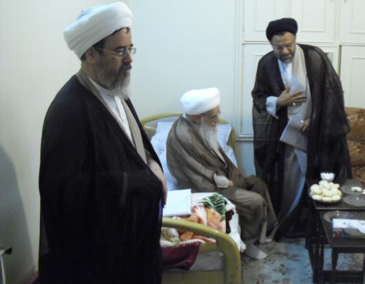 دیدار وزیر اطلاعات با آیت الله صافی + تصاویر
